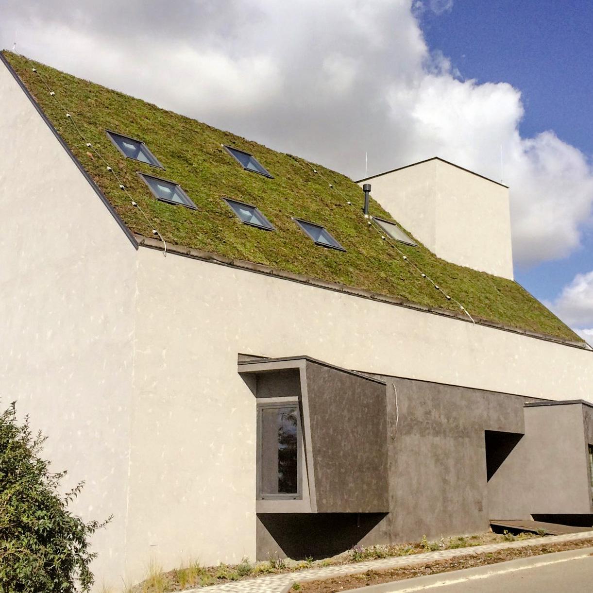 Šikmé zelené střechy