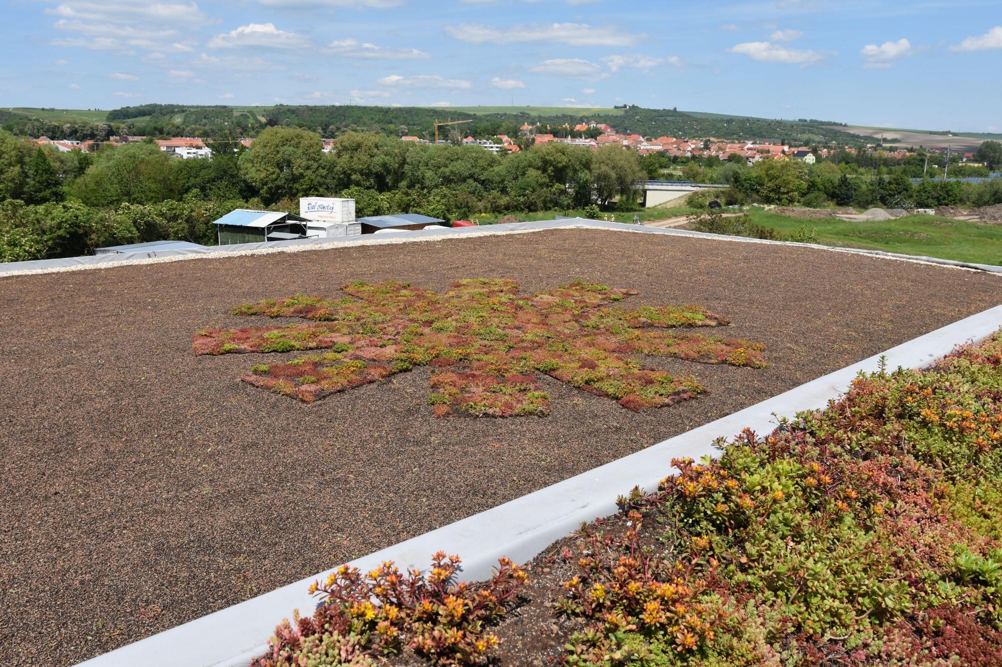 Jak tvoříme zelené střechy?