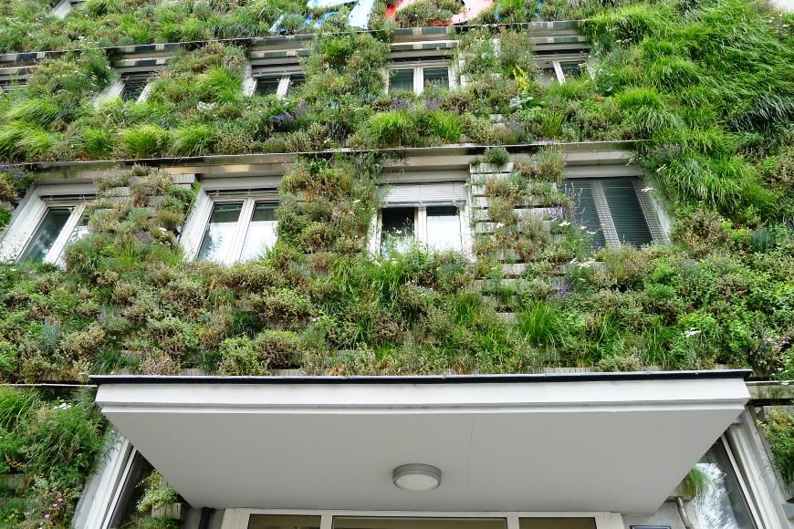 Zelená fasáda domu v Einsiedlergasse