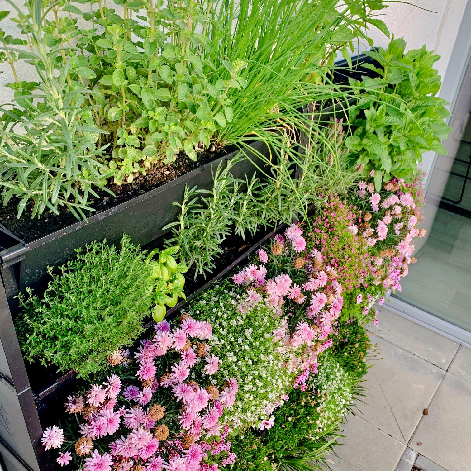 Pořiďte si naše modulární truhlíky PlantBox