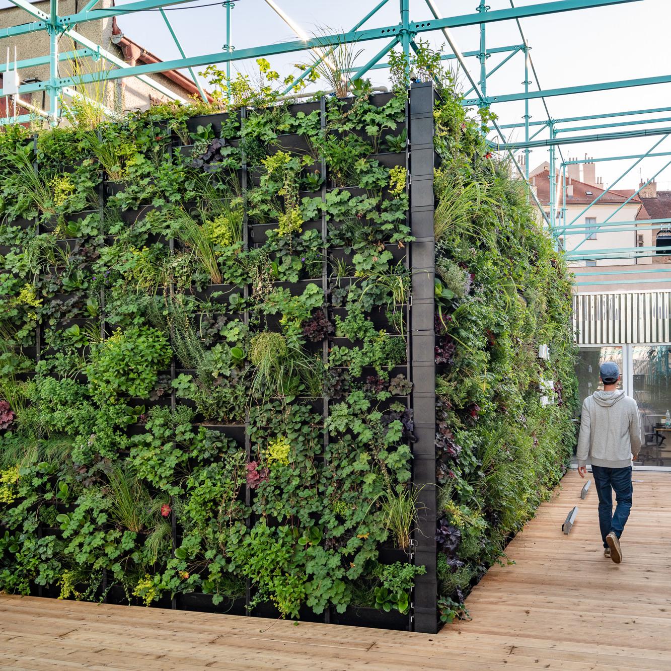 Samozavlažovací zelené stěny PlantBox®