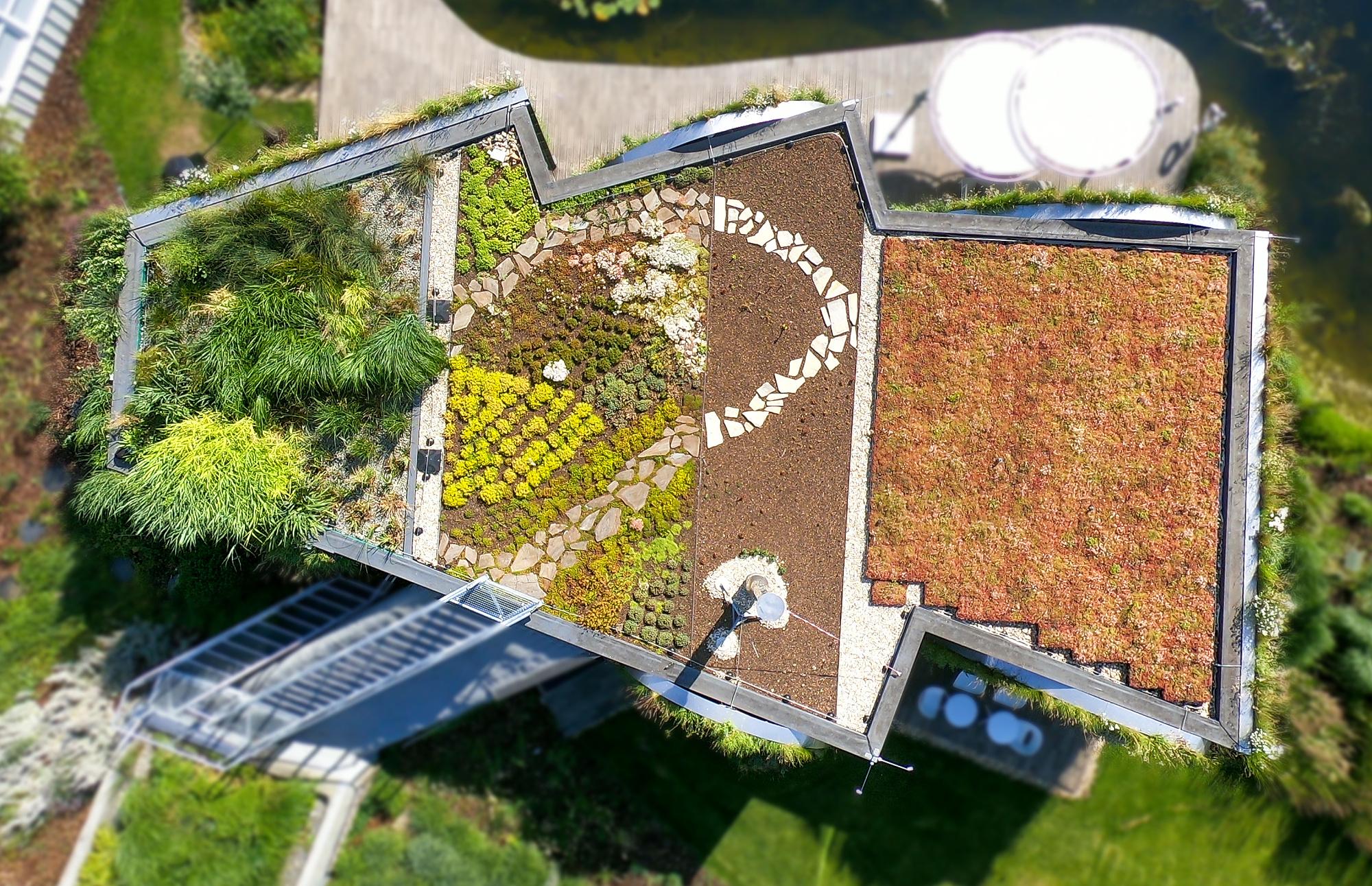 Využijte dotace na zelené střechy!