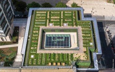 Zelené střechy pro příjemný a trvale udržitelný život