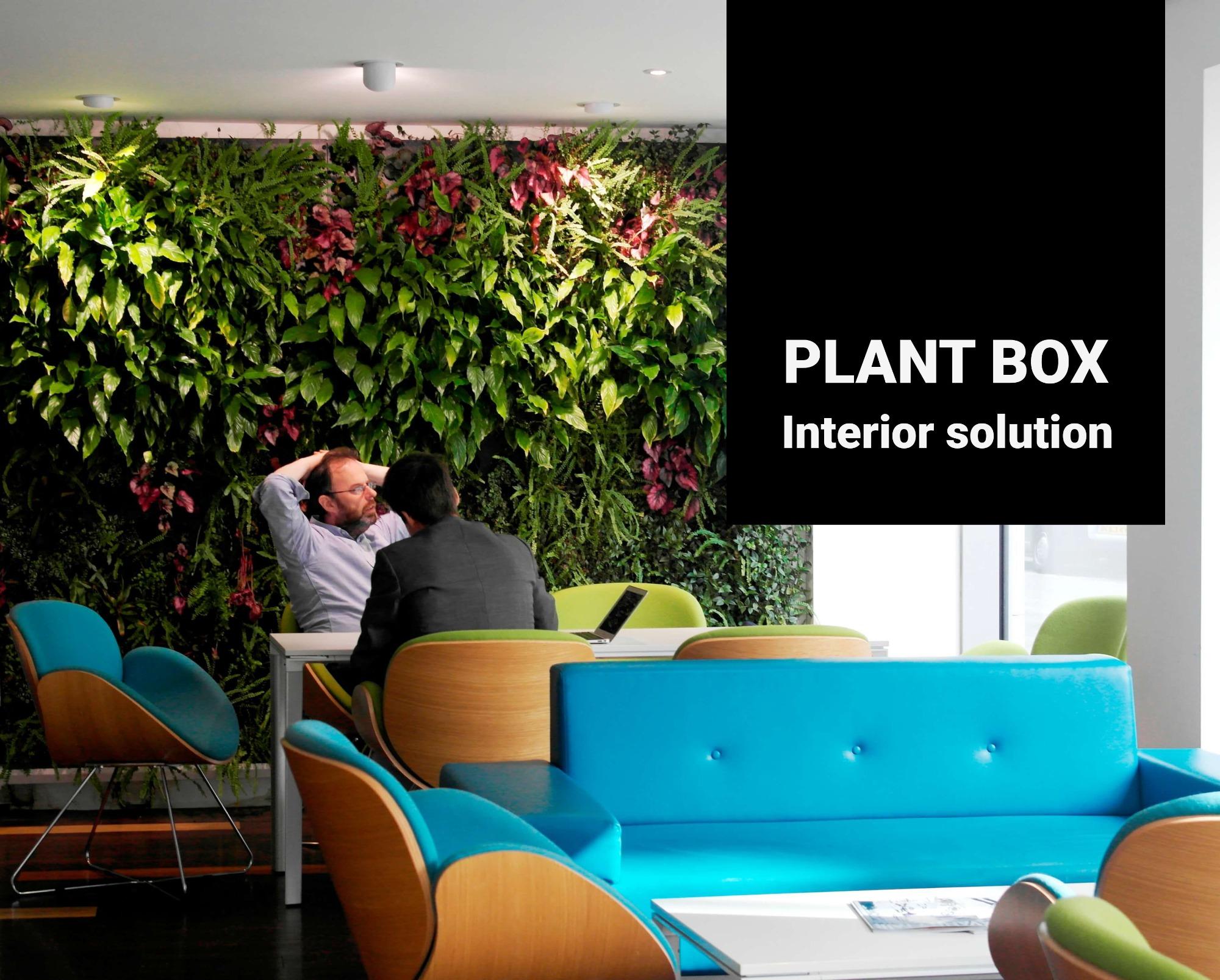 Interiérové zelené stěny