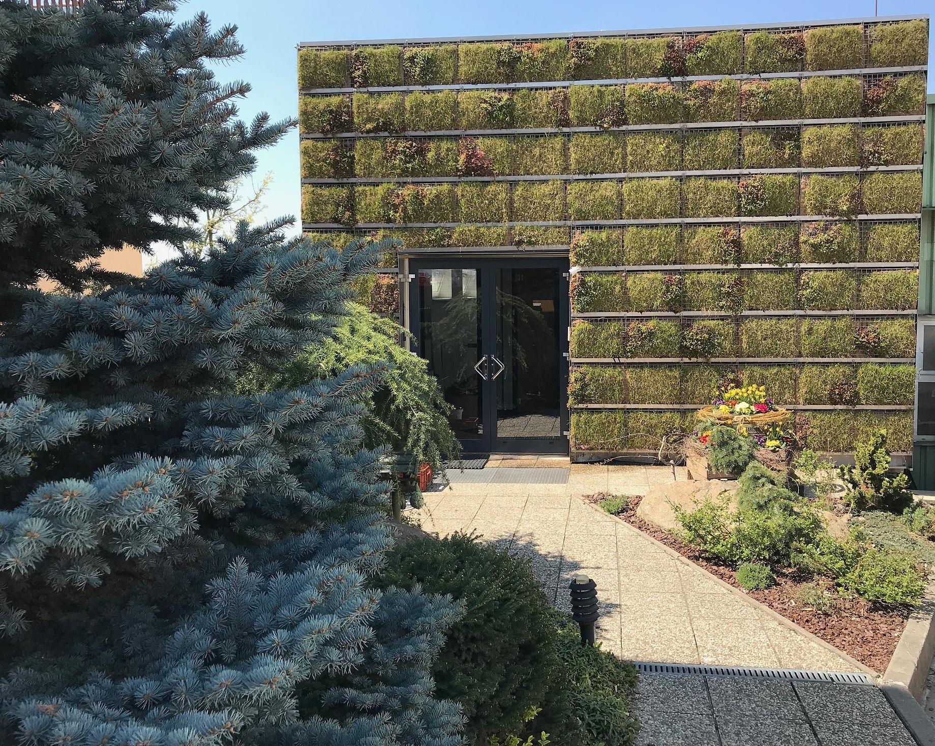 Jarní motivy zelené fasády